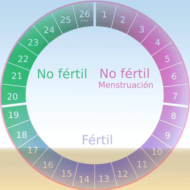 Como contar el periodo menstrual